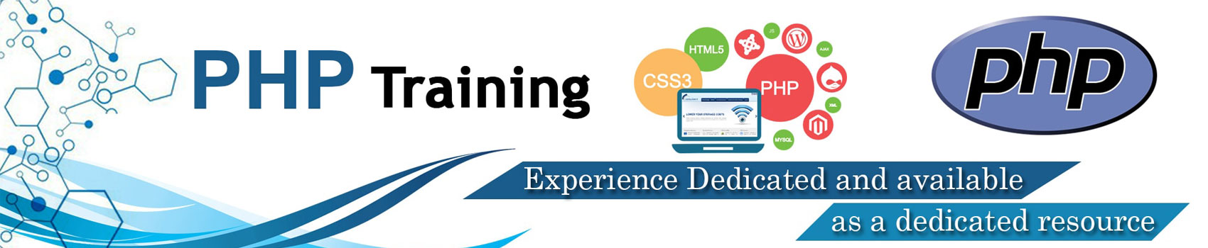 Learn Online PHP Mysql Developer Programming Training Course Tutorial Certification